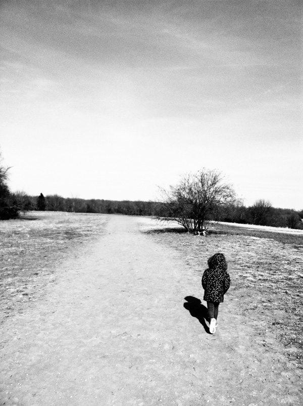 Jan22-Dog-Park