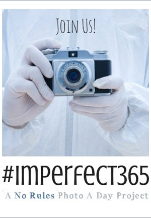 Join the Perfectly Imperfect Project 365 Photo a Day Project Details on dineanddish.net