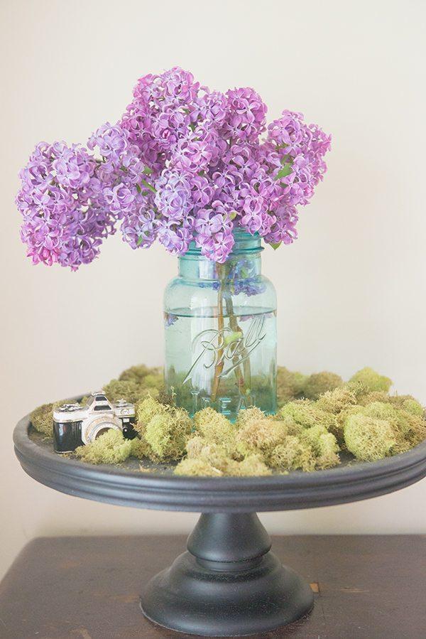 fresh lilacs