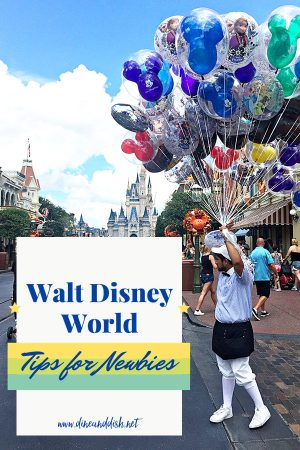Disney Vacation Tips for Newbies on dineanddish.net