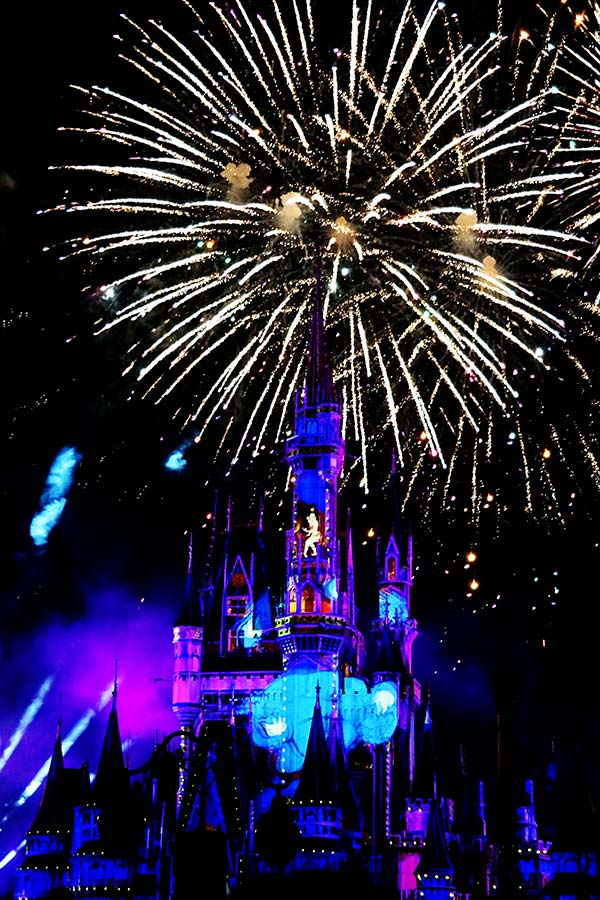Magic Kingdom Happily Ever After Dessert Party