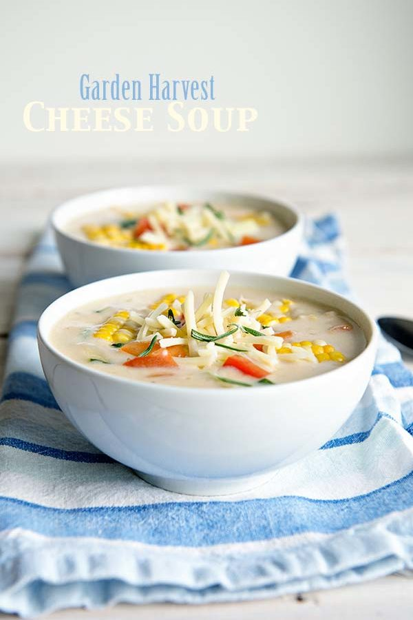 Garden Harvest Cheese Soup Recipe from dineanddish.net
