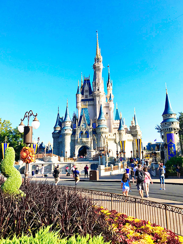 Visit Disney World Theme Parks during Magic Hours
